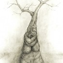 A drawing of a tree met in Camberwell.