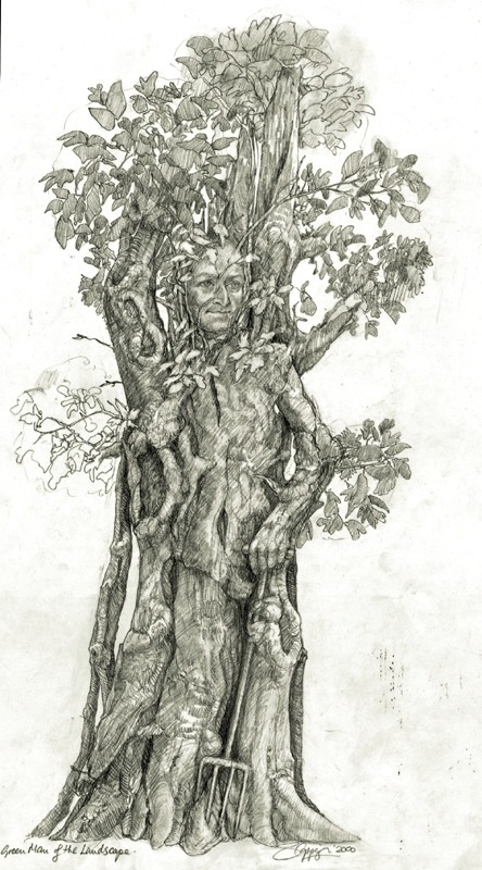 Green Man Of The Landscape Drawing Sioban Coppinger